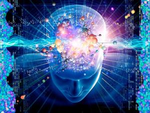 brainwave-image.jpg